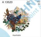 A 13520 Z07 KDV Tetřev na stromě 2/130
