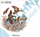 A 13520 Z09 KDV Kachna divoká 2/130