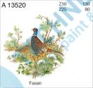 A 13520 Z10 KDV Bažant 2/130